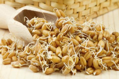 Масло из проросшей пшеницы